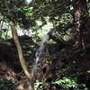 南玉不動尊の滝