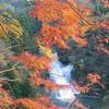 養老渓谷 粟又の滝(大多喜町)